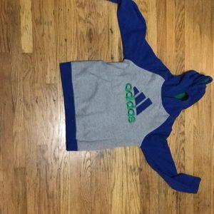 Adidas lifestyle hoodie